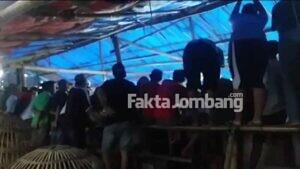 Warga Resahkan Arena Judi Sabung Ayam di Tondowulan Jombang