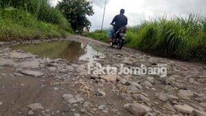 Jalan di Perbatasan 3 Desa Wilayah Diwek Jombang, Memprihatinkan