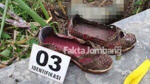 Mayat Mrs X Ditemukan Membusuk di Kebun Tebu Rejoslamet Jombang