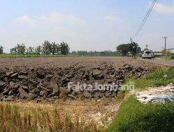 Terkategori Lahan Hijau, Alihfungsi di Jarak Kulon Jombang Akhirnya Dihentikan