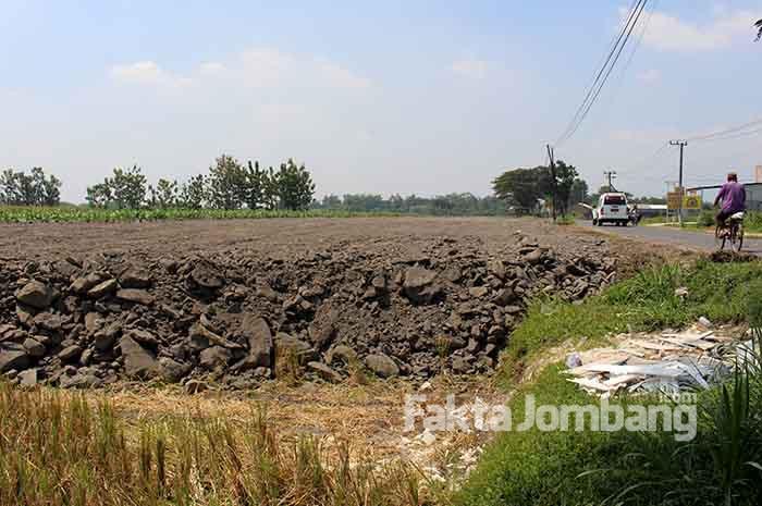 alihfungsi lahan di Desa Jarak Kulon, Kecamatan Jogoroto, Jombang