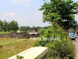 Alihfungsi Sawah di Jarak Kulon, PUPR Jombang Sebut Lahan Hijau
