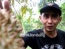 Ada Ratusan Pohon Durian, Lahan di Pucangrejo Wonosalam Jombang Dirancang Jadi Eduwisata